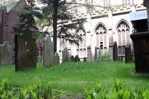 Graveyard NYCp4017